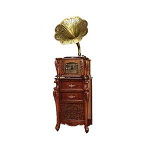 TBTUA Big Horn Antique Gramophone Wireless Turntable Salut-FI système, Haut-parleurs d'étagère Vinyle phonographes (Color : Brown)