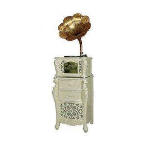 TBTUA Big Horn Antique Gramophone Wireless Turntable Salut-FI système, Haut-parleurs d'étagère Vinyle phonographes (Color : White)