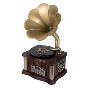 HIUHIU Mini rétro Gramophone Bluetooth 4.2 Dual Track USB Lecteur Télécommande FM Deux Président Gramophone,Style 1