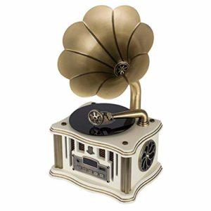 HIUHIU Mini rétro Gramophone Bluetooth 4.2 Dual Track USB Lecteur Télécommande FM Deux Président Gramophone,Style 2