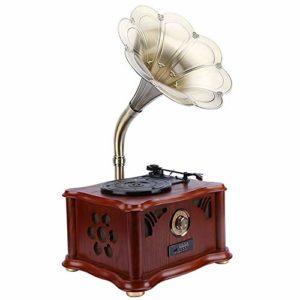 TWFY Phonographe Record Phonograph Record Multifonctionnel Retro Solid Wood phonographes Bluetooth USB Subwoofer pour la Maison Décoration (Color : C1, Size : Big Movement)