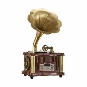 ASDNN Boîte Musique phonographe Haut-Parleur sans Fil, avec entrée auxiliaire, Radio FM, Port USB pour Lecteur Flash, Style rétro Vintage Gramophone pour décoration Maison Divertissement